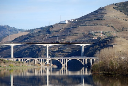 Douro Valley Private Tour with Local Guide