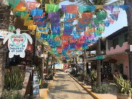 Sayulita & San Pancho Beach Towns from Puerto Vallarta