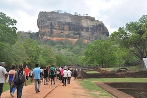 Sigiriya and Minneriya from Colombo (2 Days)