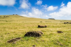 Poike Peninsula: Full Day Private Hike