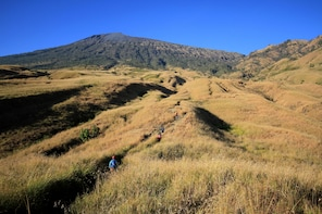 THE HILLS AND RICE TERRACE