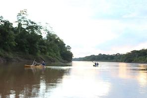3 Days Amazon Rainforest & Macaws clay lick Tour