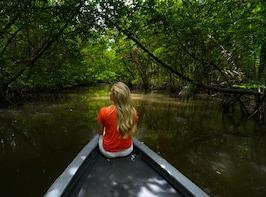 Mangrove Kayaking Tour