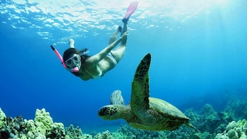 3 Days Private Tanjung Bira Snorkelling Tour from Makassar