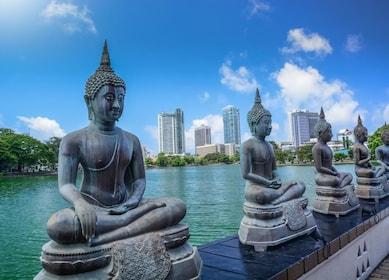 Colombo-Seema Malaka Temple.jpg