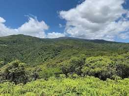 Stunning Hike Through Hawaii's Largest Private Preserve