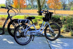 Livermore Wine Country Electric Bike Rental