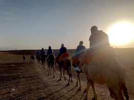 Sunset Camel Ride Experience in Agafay Desert From Marrakech