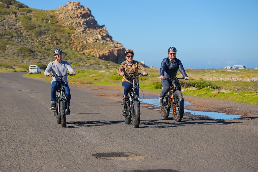 Show item 3 of 8. Electric Bike Cape Peninsula Tour