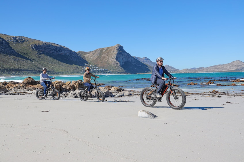 Show item 1 of 8. Electric Bike Cape Peninsula Tour