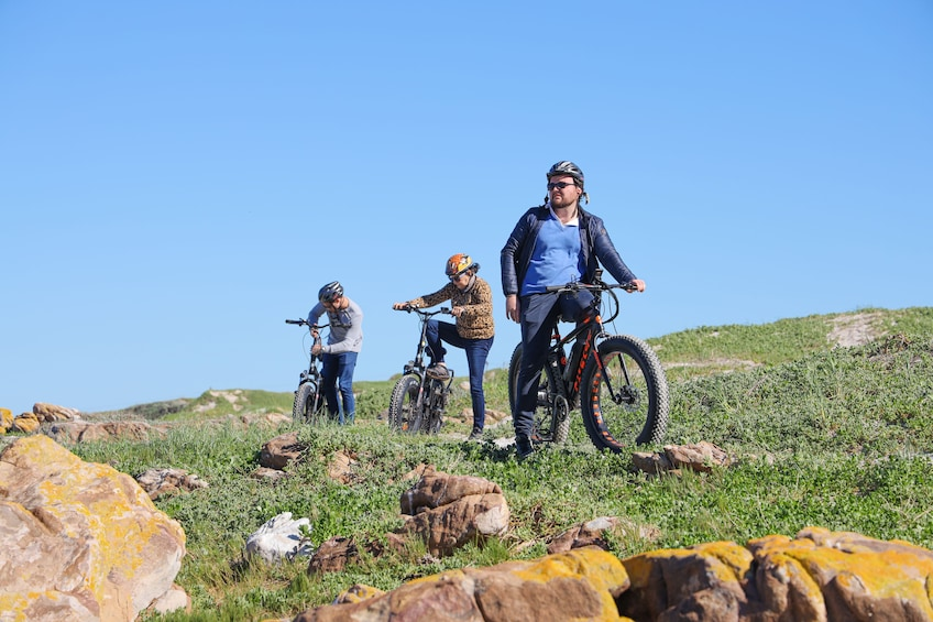 Show item 8 of 8. Electric Bike Cape Peninsula Tour