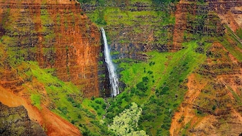 Intimate Waimea Canyon, Kauai Half Day Eco Fun Tour