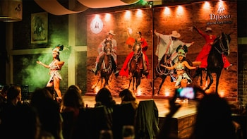 Dinner show Magic, passion and pride Peruvian Paso Horse
