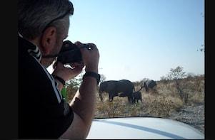 Wildlife Viewing in Etosha National Park