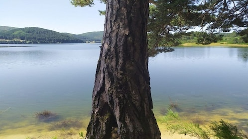 Sila National Park: Half Day Hiking with excursion guide