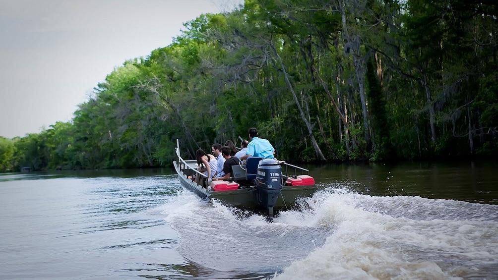 Cajun Bayou & Swamp Tour - New Orleans (Self Transport)