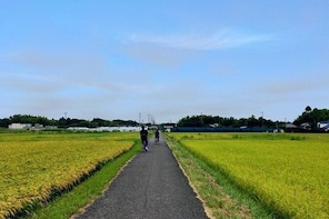 Rural Japan cycling tour to the rich nature area in Ichinomiya