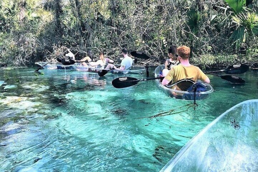 Show item 5 of 8. 2-Hour Glass Bottom Guided Kayak Eco Tour in Rock Springs (Small-Group)
