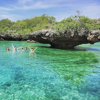 Safari Blue Zanzibar - Full Day Trip