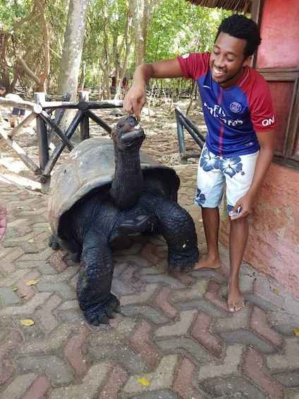 Show item 4 of 10. Zanzibar Prison Island Tour and Nakupenda Sandbank Trip
