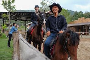 Horse Lesson+Riding+Doikham Holy Temple Chiangmai