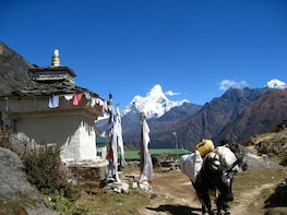 Cho La Pass Trek – Gokyo Lake and Everest base camp