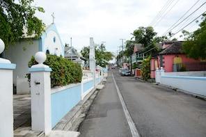 Bike Tour of Historic Downtown Nassau