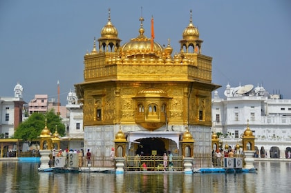 amritsar golden temple morning1.jpg