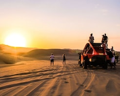 Full Day Tour Paracas + Huacachina From Lima
