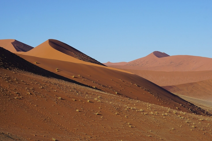 Show item 2 of 4. 4 Day/ 3 Nights Sossusvlei Experience