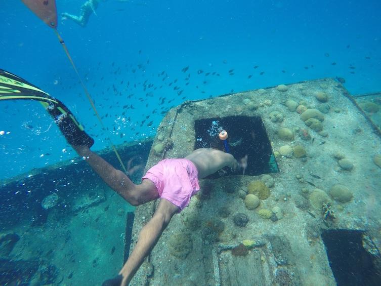 Snorkel Sunset Cruise In Barbados