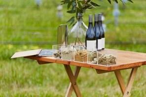 Tasting terroir amongst the vines
