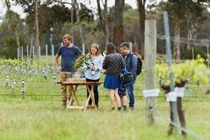 Organic Vineyard/Farm Tour