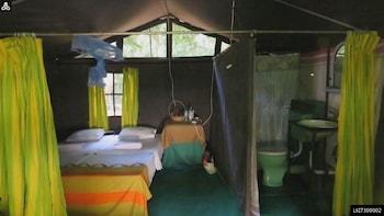 1 Night Camping in Wilpattu National Park
