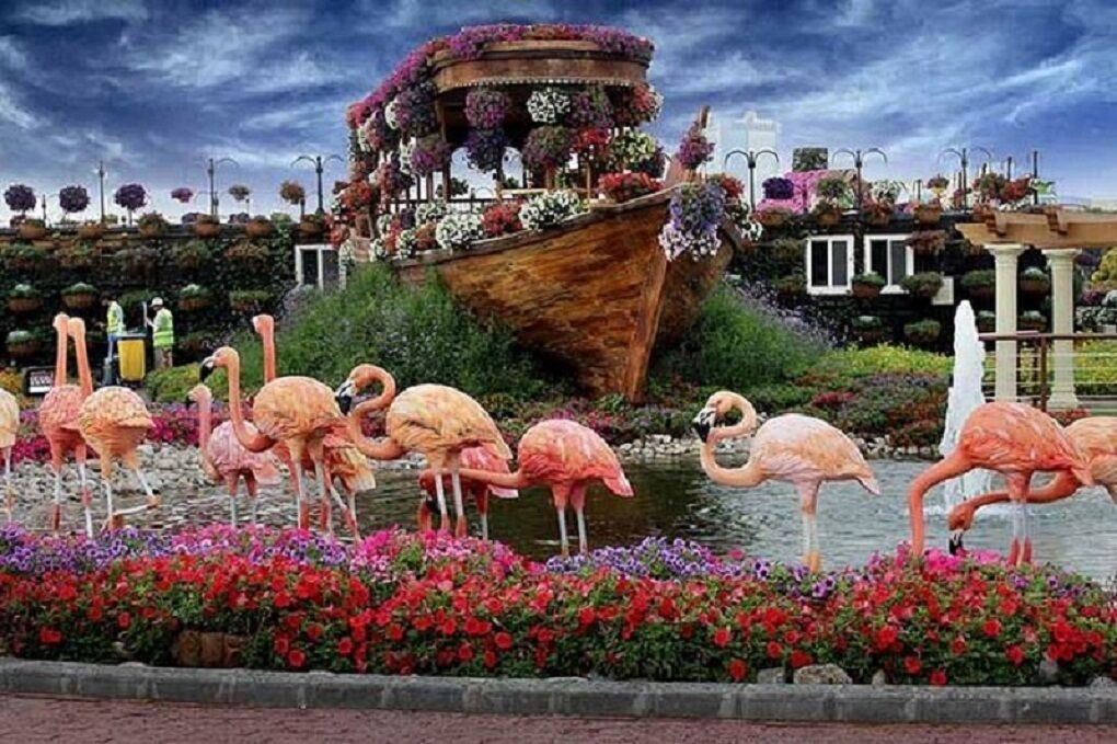 Miracle Garden Ticket In Dubai With Transfer