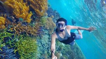 Private Lombok Snorkelling Tour at Gili Kondo and Gili Bidara