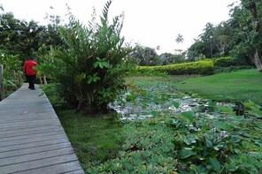 Private Tahiti Island Tour - Half Day