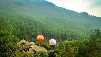 Lembang Day Tour from Bandung