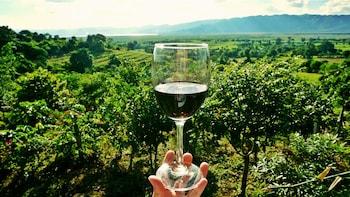 Bordeaux Wines 2Day Private Tour: Médoc, Pomerol & St.Émilon