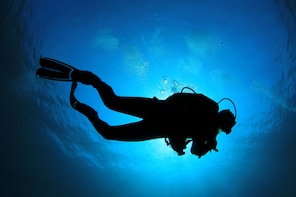 Fundiving Nightdive (advanced certified divers only)