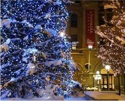Holiday Lights Tour