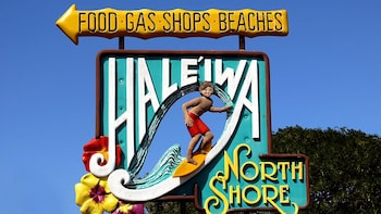 Deluxe Bus Grand Circle Island with Haleiwa