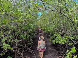 Trail of the Slaves in Porto de Galinhas from Recife