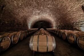 Enjoy 2 outstanding wineries in Lujan de Cuyo