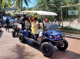2 Hours Miami golf cart guide tour