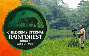 Children's Eternal Rainforest Hike Tour