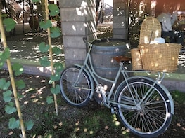 Bike wine tour. Visit 2 of the best wineries