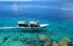 Explore Menjangan Island on an Overnight Dive Trip