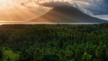 Sulawesi Nani Wartabone National Park Tour