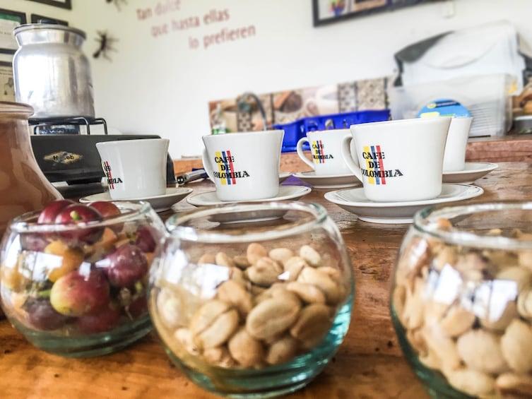 Show item 5 of 5. Coffee Farm Experience at Finca El Ocaso, Salento
